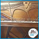 piano-flr